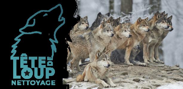 Rejoignez la meute - tete de loup nettoayge